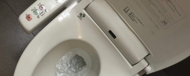 Hygiene Japan style